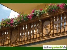 Balkonbretter Ornament Fichte Lärche Balkonbrett Holzbalkon Balkongeländer holz1