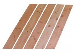 Balkonbrett Göttingen Douglasie Lärche Balkongeländer Holz