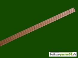 Londonleiste Zierblende Douglasie 400 cm lang